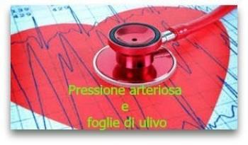 Pressione arteriosa e foglie di ulivo